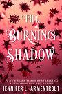 theburningshadow.jpg