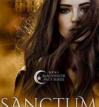 Sanctum by Hannah McBride
