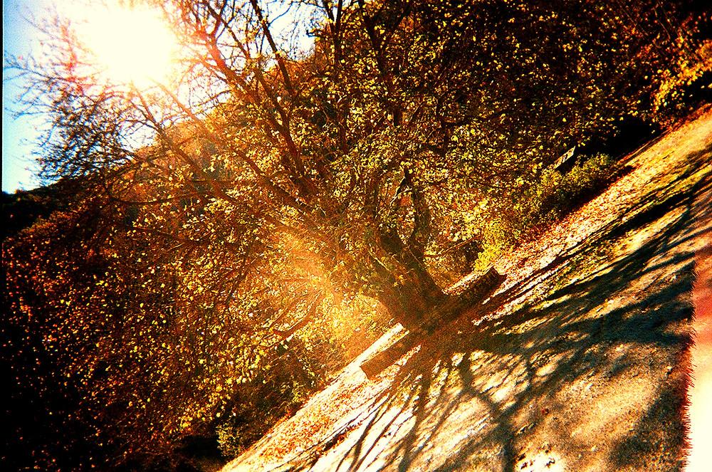 Kodak Fun Saver pic by Nefeli Liouta