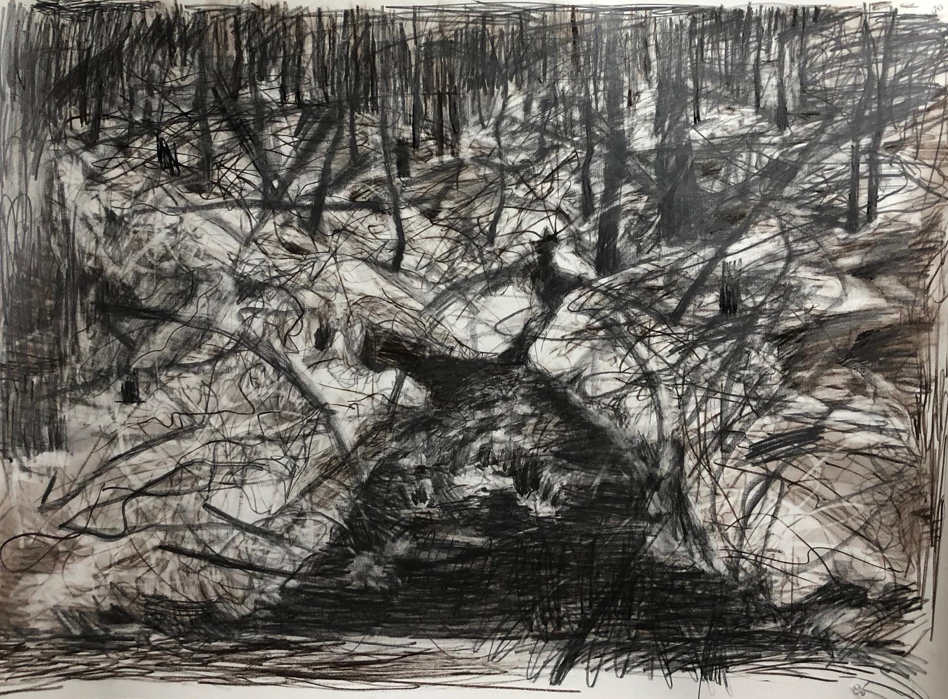 風景(手稲) | 色鉛筆、パステル、紙 1030mm ☓ 1456mm | 2018