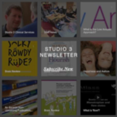 Studio 3 newsletter grid