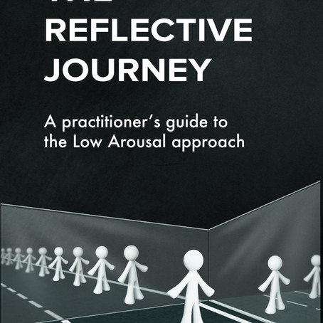 The Reflective Journey: Available now!