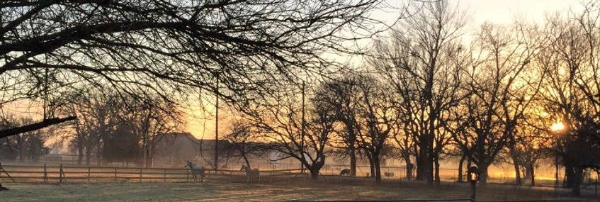 December Dawn.jpg