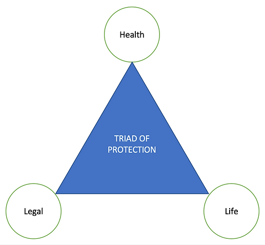pic JNA Triad of Protection.png