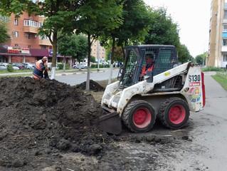 Планировка газона на улице Джона Рида