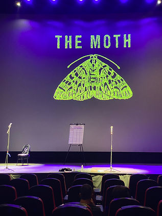 the moth at the double e .JPG