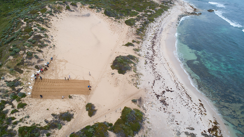 Protecting cultural places, restoring dune systems. Photo by Andy McGregor