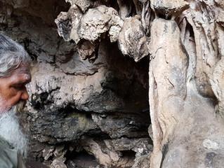 Waljin Mia (Rainbow Cave) Restoration Project