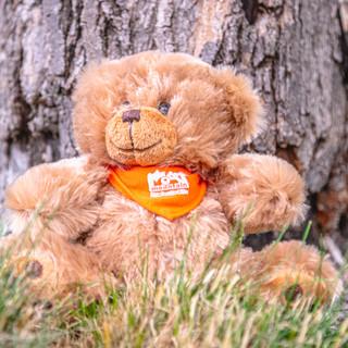 Stuffed Teddy