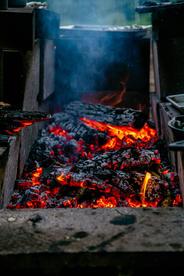 Dahlia x Open Fire-135.jpg