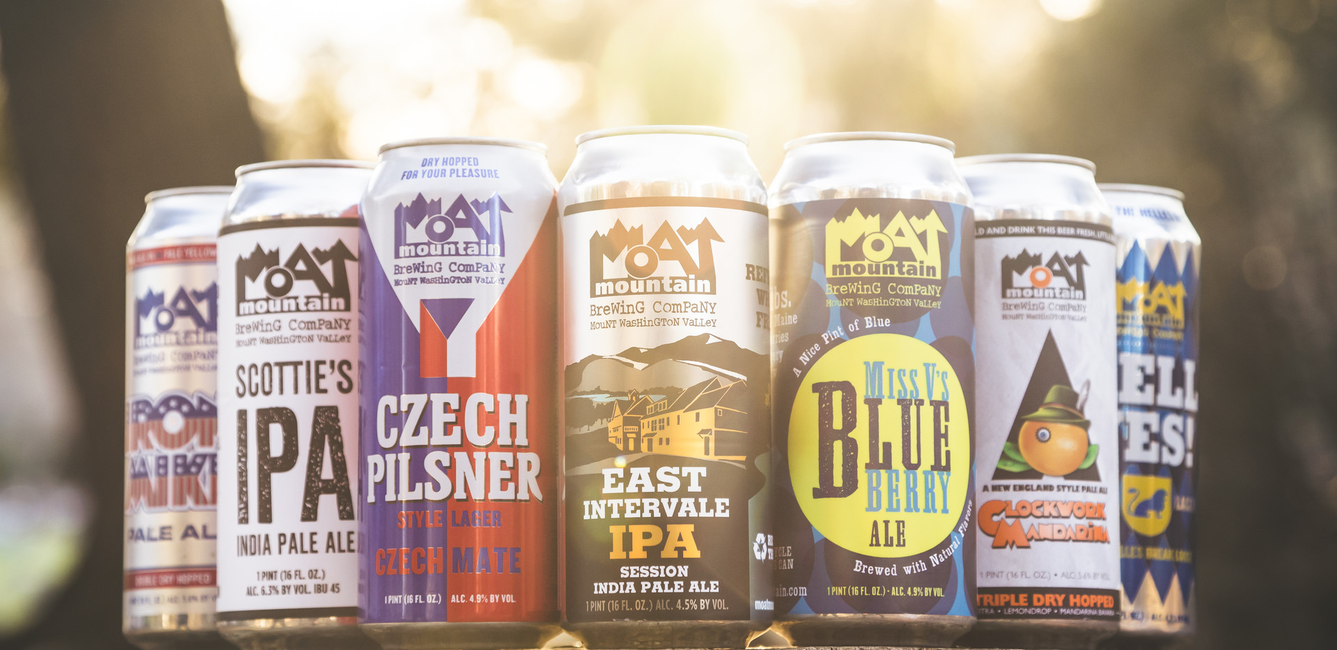 Moat Mountain Brewing