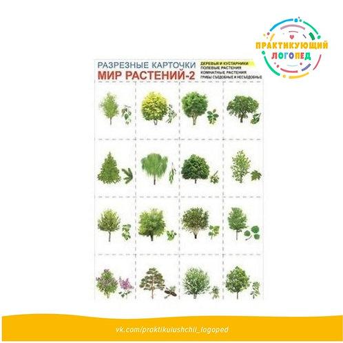 Мир растений-2. Комплект разрезных карточек (Формат А4+, 4 листа)