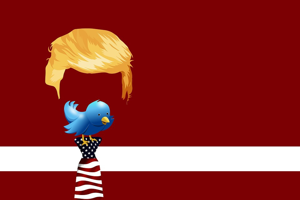 Trump's hair floating atop a blue twitter bird perched atop a necktie featuring the stars and stripes.