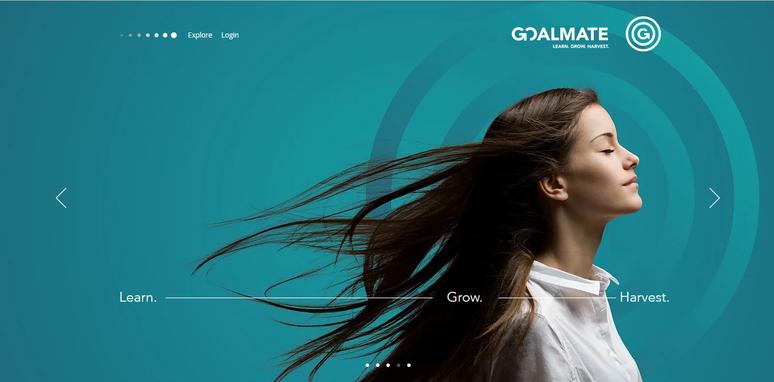 Goalmate Interactive Website