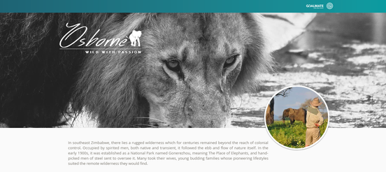 Wild With Passion Logo & Website