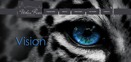 Urban Rises Logo & Website