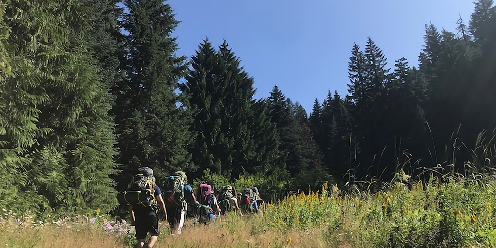 Forest Bathing Immersion   (1)