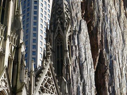 newyork11_80x60_72dpi.jpg