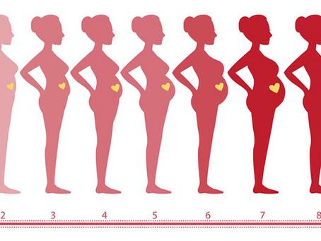 'Υπερηχογράφημα καλής κατάστασης του εμβρύου' - Τί είναι; Πότε το κάνουμε; Τί εξετάζει;