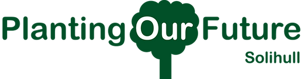 Tree Logo High Quality.png