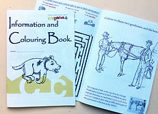 Information and Colouring book.jpg
