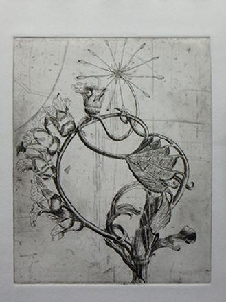 strange flower etching marie-noelle van