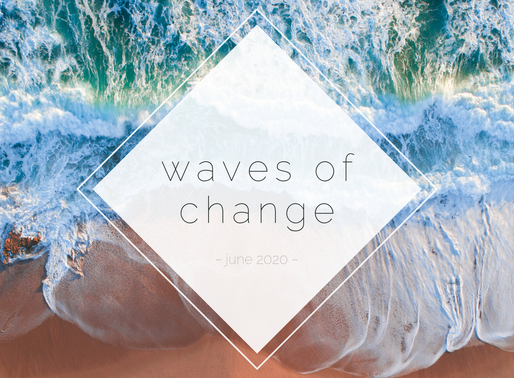 June Newsletter: Make Waves to End Homelessness