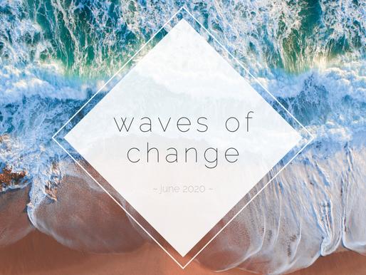 June Newsletter: Make Waves to End Homelessness