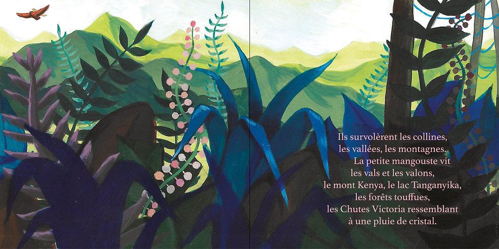 Livre La petite mangouste BLD9.jpg