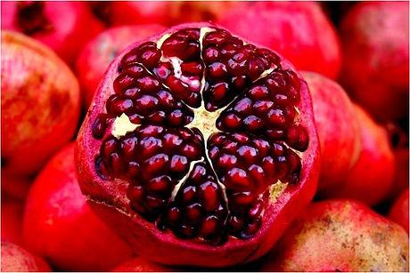 Bloomfield Pomegranets.jpg