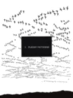 sreece_ornithology for artists_section 3