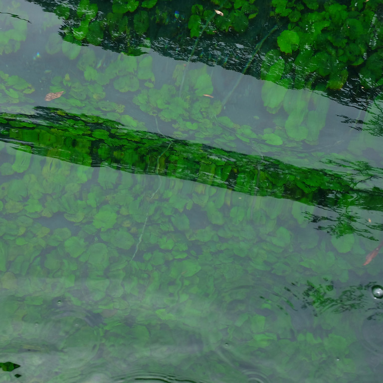 Agua y Agricultura Sostenible