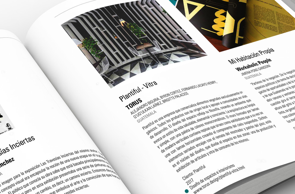 Libro BID_TORUS2.jpg
