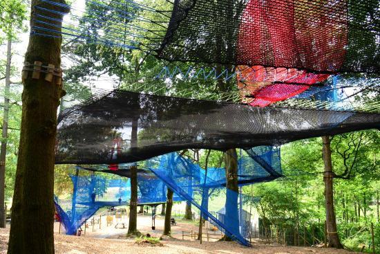 treetop-nets.jpg
