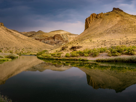 10 Naturalist Field Guides for the Owyhee