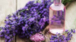 Bulgarian-lavender-oil_1266693187_edited