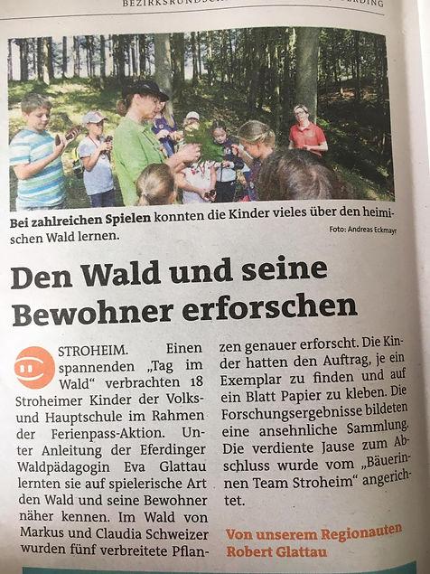 2019 09 25 BezRundschau EF Tag im Wald k