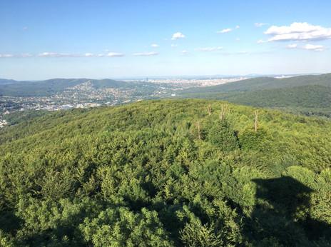 Ausblick in den Westen Wiens