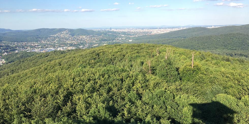 Aussichtswarte Rudolfshöhe