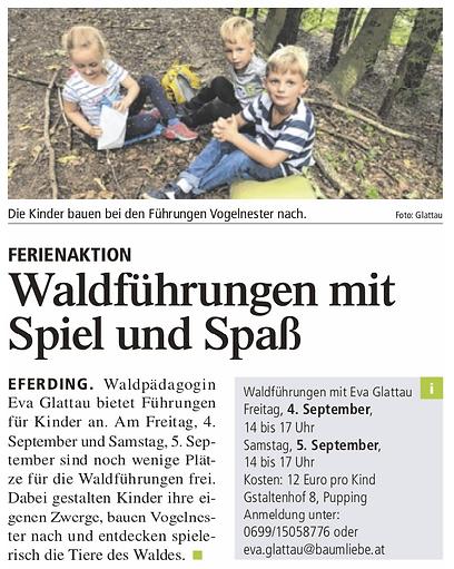Tips Eferding Grieskirchen Waldführung Eva Glattau Baumliebe