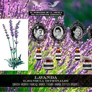 Las Friegas, El Herbario de la Abuela, P