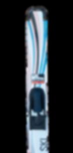 Ski_1.png