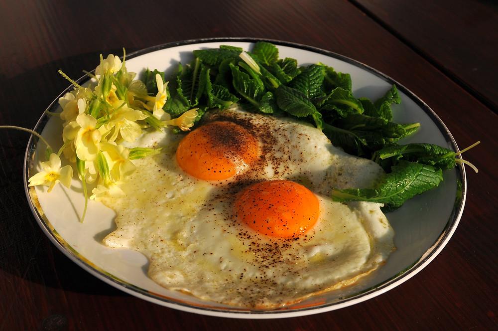 Jajca s torbenticami