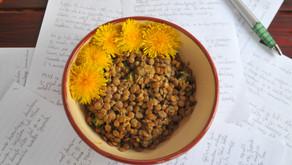 Leča z regratovimi cvetovi