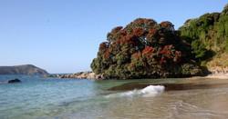 Matai Bay