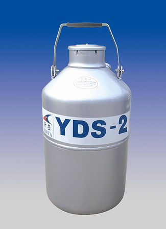 YDS-2.jpg