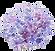 transparant bloem.png