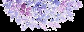 transparant halve bloem.png