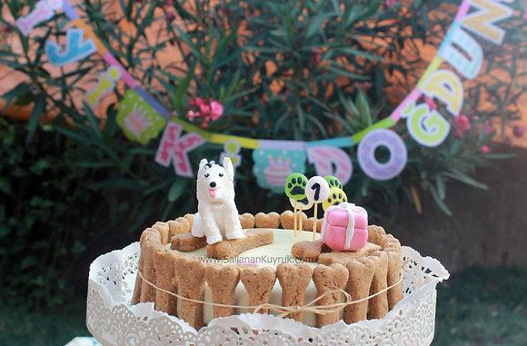 Köpek Pastası (Meyveli) / Doggy Cake (Fruits)