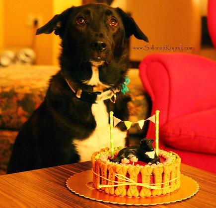 Köpek Pastası (Tavuklu) / Doggy Cake (Chicken)